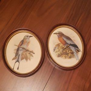 Set of 2 Vintage Bird Prints 🐦 in Oval Wood Frame